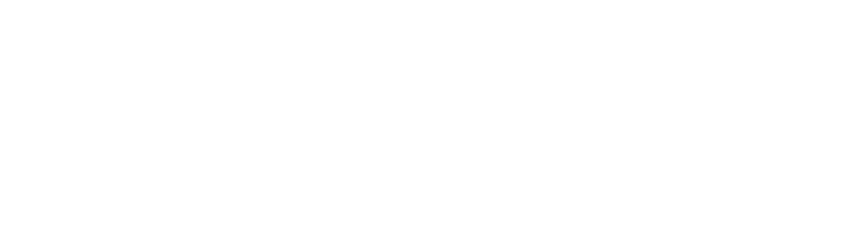 zeereis logo